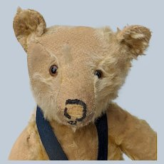 """Soulful Poor Pathetic Early Steiff 18"""" Mohair Teddy Bear No ID with Working Growler"""
