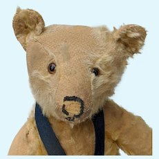 "Soulful Poor Pathetic Early Steiff 18"" Mohair Teddy Bear No ID with Working Growler"
