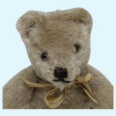 Cute Little Vintage Mohair Steiff Original Teddy Bear No ID