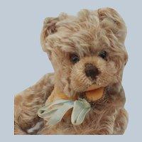 Cute Vintage Steiff Mohair Zotty Teddy Bear No ID