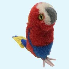 Lovely Little Vintage Steiff Woolen Pom Pom Parrot Minty with ID