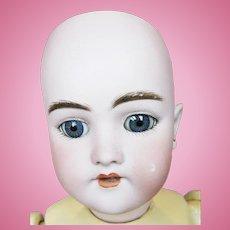 """Antique 17"""" German Bisque Head Handwerck 119 Mold Doll"""
