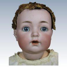 """Antique 16"""" Kammer Reinhardt 121 Mold German Bisque Head Baby Doll"""
