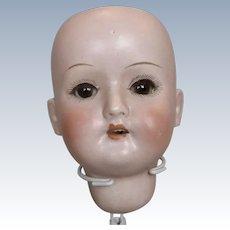 Antique German Bisque Schoenau Hoffmeister Doll Head