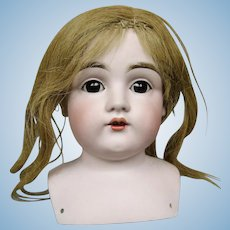 Large Kestner Antique Bisque Head With Original Wig and Pate