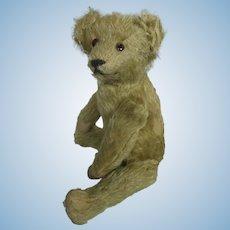Antique Well-Loved Mohair Teddy Bear