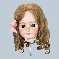 Gorgeous Human Hair Curly Wig for Large Bisque Head Doll