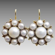 Pearl Flower Earrings in 9 karat Gold