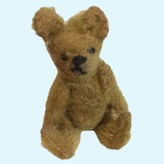 Early Smallest Steiff Teddy