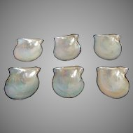 Group of Six Cultured Pearl Oyster Shell Dishes Sterling Japanese