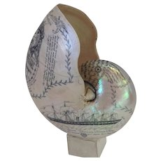 Wood The Great Exhibition Nautilus Shell 1851