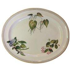 """Wedgwood Creamware Botanical Oval Platter 19"""""""