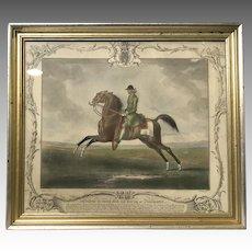 Racehorse Champion Childers Mezzotint 1755