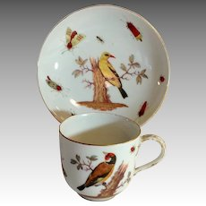 Meissen Ornithological Coffee Cup and Saucer 18th c Birds and Insects
