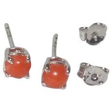 Coral Stud earrings in Sterling Silver