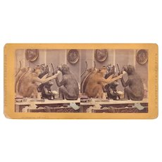 Hand Colored Stereoview Monkeys at the Barber Shop