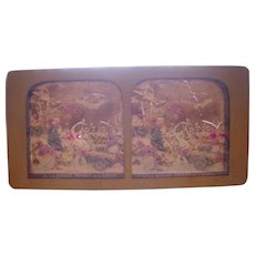 French Hand Colored Tissue Stereoview Diableries #8