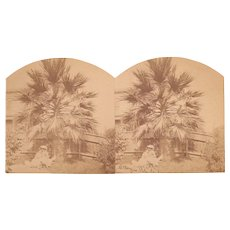 1870s Stereoview San Jose, CA