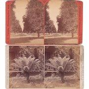 Pair 1880s Stereoviews of Los Angeles CA