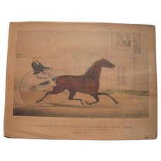 "Early 1900s Hand Colored Currier and Ives Copy ""Trotting Mare Lucy"""