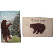 Lot 14 1906/1907 Teddy Bear w/Applied Fur Postcards