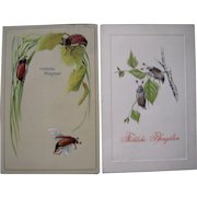 Lot 8 c1910 Pfingsten / Easter Postcards w / Insects