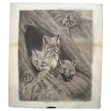 Large Victorian Era Hand Drawn Charcoal Foxes and Bird