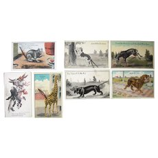 Lot 7 Animal Add on Postcards  w/Tails c1911