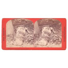 c1880 Stereoview of Pappoose Niagara Falls, NY #505