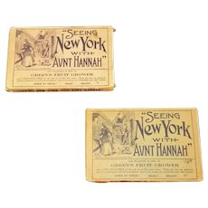 Lot 50 Seeing New York with Aunt Hannah City Color Litho Landmark Postcards 1910