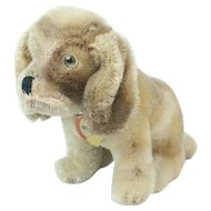 """RARE 1950s German Steiff """"Basset"""" Puppy Dog with All ID 4 1/2"""""""