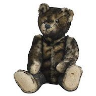 """1910s Antique Black Tipped Mohair Teddy Bear with Shoe Button Eyes 12 1/2"""""""