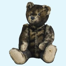 1910s Antique Black Tipped Mohair Teddy Bear with Shoe Button Eyes 12 1/2""