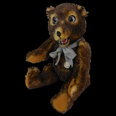 """Limited Edition Large Growling Peter Bear Germany 16"""" Mint In Box 142/250"""