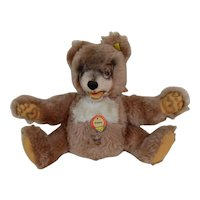 Mint 1960's Steiff PETSY Teddy Bear All Original with Ear Button & Yellow Stock Tag & Chest Tag