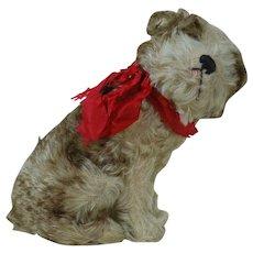 Steiff 1920's Plush Dog Molly