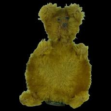 Rare 1910's-20's Schuco Atomizer Golden Bear