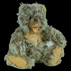 1960's Steiff Zotty Teddy Bear w/ Clear Stock Tag