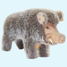 8 Inch 1960s Mint Steiff Wild Boar All ID really cute size