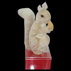 Gorgeous  8 inch US Zone Germany STEIFF Sitting Gray Squirrel eating Velvet Nut