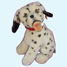 Beautiful Large Size 1950s Steiff Sitting Dalmatian Dog Jointed head ID