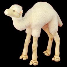 Vintage 1950s Large Steiff Camel Dromedary ID