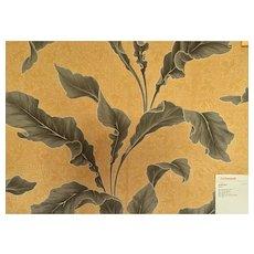 "Vintage Scalamandre Botanical ""Arum"""