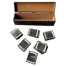 38 ANTIQUE Keystone Magic Lantern Slides with Fitted Box SCIENCE Of HORTICULTURE