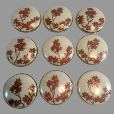 Set of 9 Matching Satsuma Buttons w/ Maple Leaves
