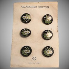 Set of Six Cloisonne Buttons w/ Daisy Pattern on Card Japan