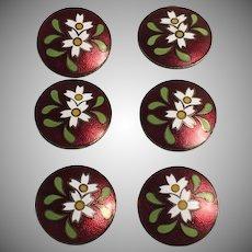 Set of 6 Modern Flower Pattern Cloisonne Buttons on Card Japan
