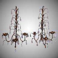 Vintage Pair Three Light Florentine Tole Italian Prism Gilt Sconces