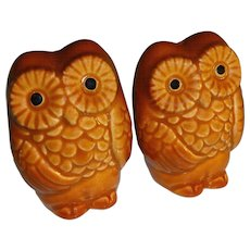 Brown Owls Salt and Pepper Shakers - Made in Japan