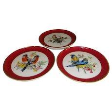 Kaiser W. Germany Porcelain Bird Coasters - Set of 3